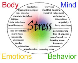 Stress Chart - describes effects of stress on body, mind, emotions and behavior