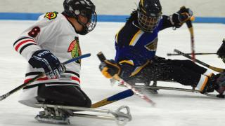 Shirley Ryan AbilityLab Blackhawks Sled Hockey