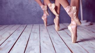 Dancers often sustain injuries requiring rehabilitation