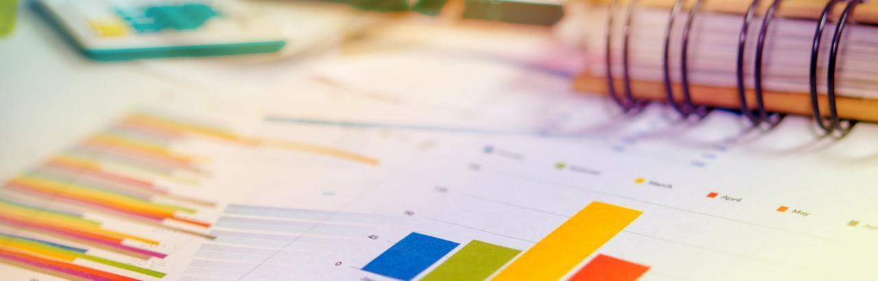 Rehabilitation Measures Database Header