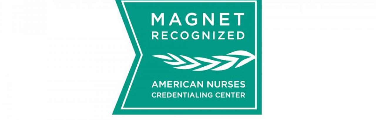 Logo for the Magnet Recognition Program