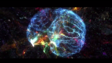 Image of neural networks of the brain